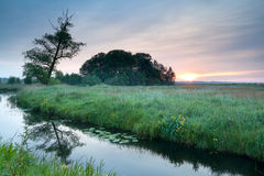 Sunrise over river in spring Stock Photography