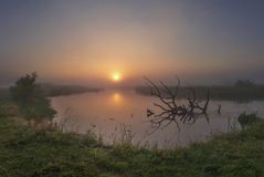 Sunrise over river. Summer nature landscape. Reflection of sun in water. Wild nature landscape royalty free stock photography