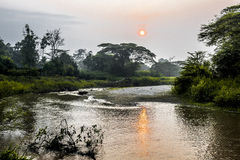 Sunrise on river in Uganda Royalty Free Stock Images