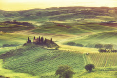 Sunrise over the rural house with vineyards in San Quirico d'Orcia Stock Image
