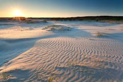 Sunrise over sand dunes Stock Image