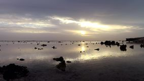 Sunrise over the sea, coastal reef at low tide stock video