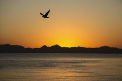 Sunrise over the Sea of Cortez. In Loreto Mexico stock photography