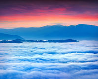 Sunrise over the sea of fog in mountains at the summer Royalty Free Stock Photo