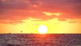 Sunrise over sea, lonely fisherman boat and flying seagull