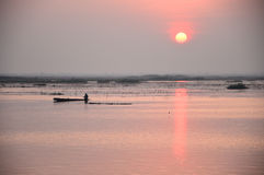 Sunrise over the sea of pink lotus, Thailand Royalty Free Stock Photos