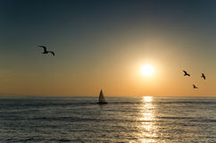 Sunrise over the sea. With a sailboat and flying seagulls Stock Image