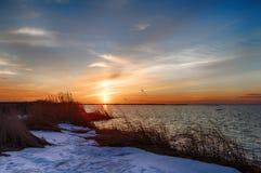 Sunrise over the sea. Sunrise with warm yellow sea grass at the coastline Stock Photo
