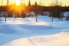 Sunrise over a snow covered pasture. Winter sunrise over a snow covered pasture surrounded by forest of trees Royalty Free Stock Image