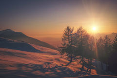 Sunrise over snowy landscape