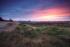 Sunrise over summer meadows Royalty Free Stock Image
