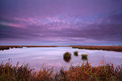 Sunrise over swamp in Drenthe Royalty Free Stock Photo