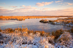 Sunrise over swamp in winter Royalty Free Stock Images