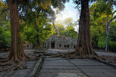 Sunrise over Ta Phrom Stock Images