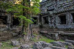 Sunrise over Ta Phrom Stock Photography