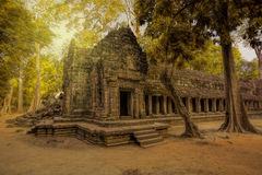 Sunrise over Ta Phrom Royalty Free Stock Photography
