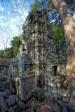 Sunrise over Ta Phrom Royalty Free Stock Photo