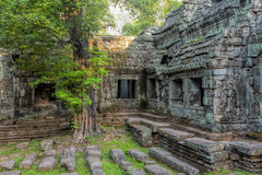 Sunrise over Ta Phrom Stock Photos