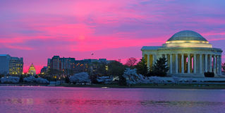 Sunrise over Tidal Basin during cherry blossom in Washington DC, USA. Stock Images