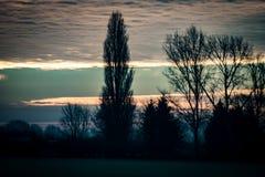 Sunrise over trees Stock Photos