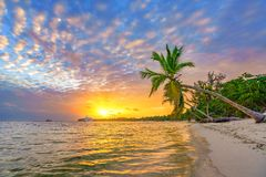 Sunrise over tropical beach royalty free stock image