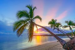 Sunrise over tropical beach royalty free stock photography