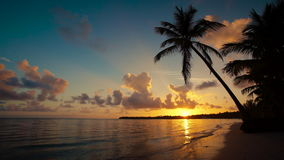 Sunrise over tropical island beach and palm trees Punta Cana Dominican Republic