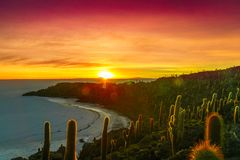 Sunrise over Uyuni salt lake from island Incahuasi in Bolivia Stock Images