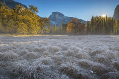 Sunrise over the Valley. The sun ascends over a stand of conifers in Yosemite Valley. From Cook's Meadow, you can witness the clash of autumn and winter as the royalty free stock photo