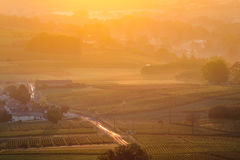 Sunrise over vineyards of Beaujolais during autumn season Stock Photos