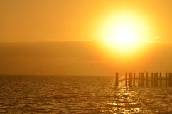 Sunrise over the Water. Watching the sun rise over the Caribbean Sea in Caye Caulker, Belize Stock Images
