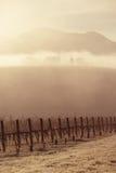 Sunrise over Yarra Valley In Winter Stock Photo
