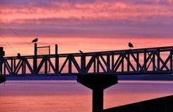 Sunrise in Pacific Ocean, Ladysmith, Vancouver Island, British Colombia Stock Photos
