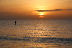 Sunrise Paddle Boarding in Florida Stock Photo