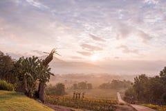 Sunrise at Pai, Thailand Stock Images