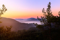 Sunrise in palatine forest Royalty Free Stock Photography