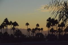 Desert Sunrise at Palm Springs. Sunrise in Palm Springs, California royalty free stock image