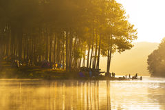 Sunrise at Pang-ung, pine forest park for relax in thailand Stock Photography