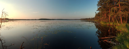 Sunrise panorama with pine forest large lake and Stock Images