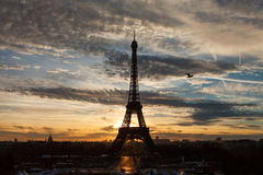 Sunrise in Paris with Eiffel Tower with red clouds and blue sky. And bird flying stock photography