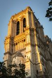 Sunrise in Paris on one of the majestic columns of Notre Dame Cathedral royalty free stock images