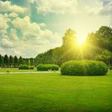 Sunrise in park Royalty Free Stock Photography