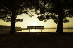 Sunrise in a park of Manresa, Spain. Summer landscape with the sun warmly illumining a bench under the trees in a park with a lake in Manresa, Spain stock photo