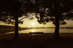 Sunrise in a park of Manresa, Spain. Summer landscape with the sun warmly illumining a bench under the trees in a park with a lake in Manresa, Spain Royalty Free Stock Photos