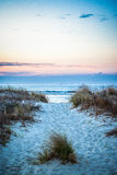 Sunrise Path at Pawleys Stock Images