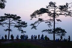 Sunrise at Phu Kradueng, Loei Stock Images