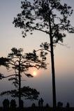 Sunrise at Phu Kradueng, Loei Royalty Free Stock Photos