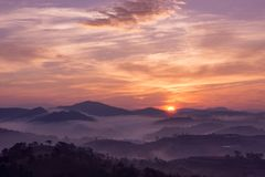 Sunrise on a pine hill. Beautiful sunrise on a pine hill at Dalat, Vietnam Royalty Free Stock Images