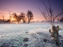 Sunrise in Poland. Winter morning sunrise in Poland Royalty Free Stock Images