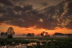Sunrise on the pond Stock Photos